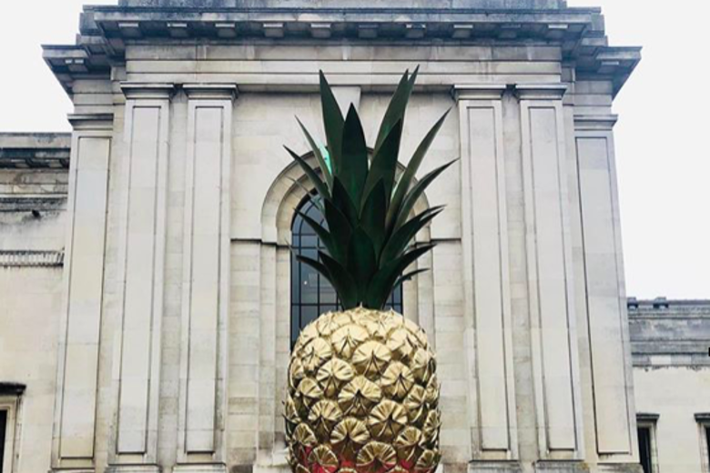 Giant painted pineapple on lawn