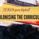 decolonising the curriculum carousel