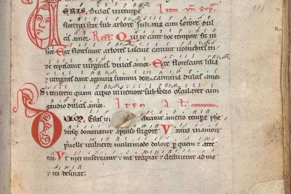 revisiting the codex buranus