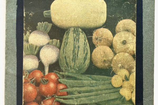 book cover showing variety of homegrown vegetables
