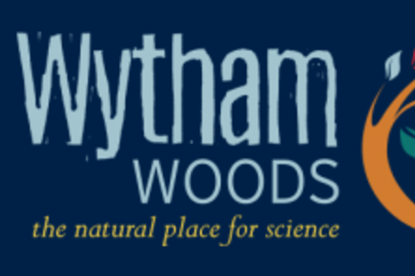 envronmental humanities wytham woods
