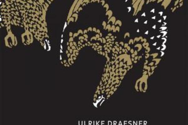 Ulrike Draesner image