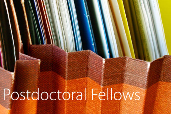 fellowships post doc fellowships banner