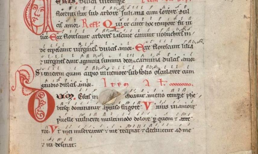 revisiting the codex buranus