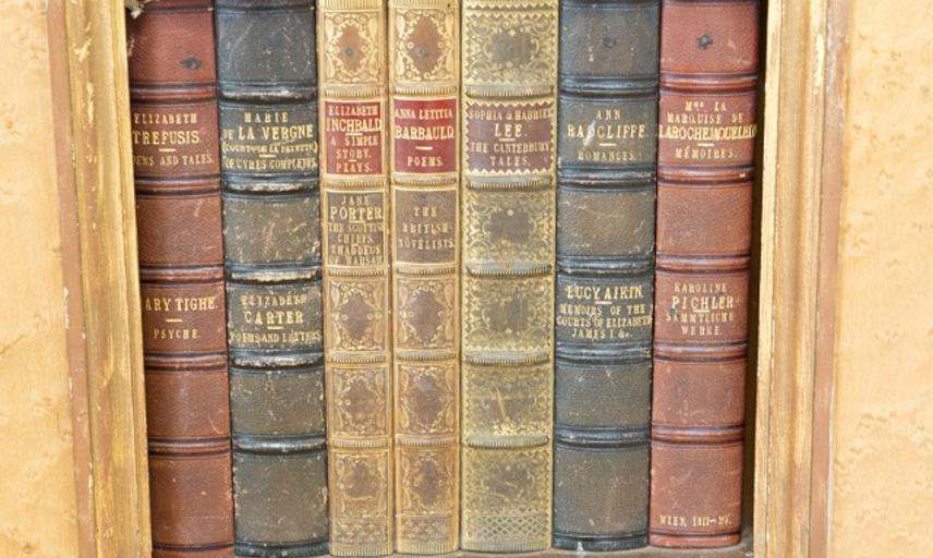 Image showing a bookshelf with leaher bound old books at Compton Verney Library