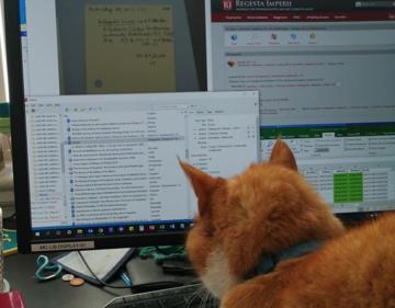 manuscripts cat