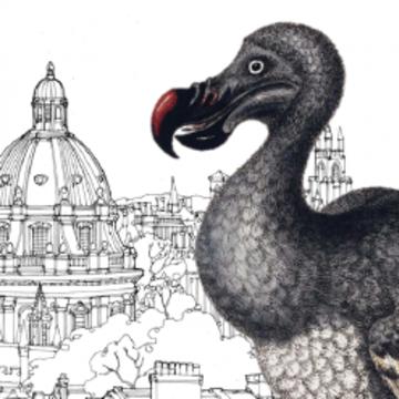 dodo oxford