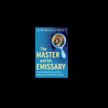 blue book cover of 'The Master and the Emissary' against black backdrop