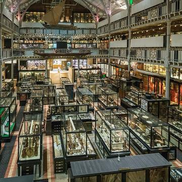 pitt rivers museum main court credit ian wallman c pitt rivers museum university of oxford